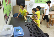 곤충체험학습농장